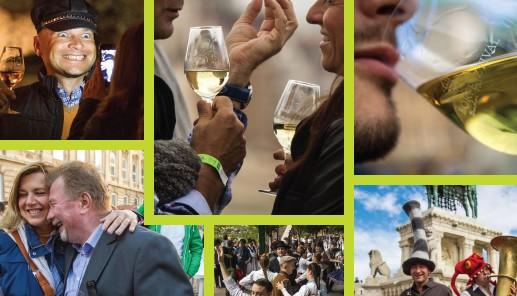 Internasjonal Vinfestival 2015