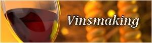 vinsmaking i budapest